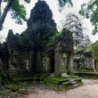 Ta Prom temple, Siem Reap, Cambodia — Stock Photo