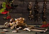Mushrooms and berries — Stock Photo