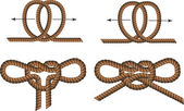 Brown Rope borders with Different Knots — Stock Vector