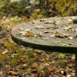 Fallen leaves on an old table — Stock Photo