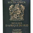 South AfricPassport. — Stock Photo #12303291