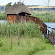 A bird hide in Africa. — Stock Photo