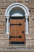 Ancient Door. — Foto Stock