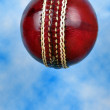 Cricket ball. — Stock Photo #14547993