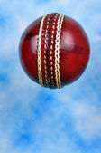 Cricket ball. — Stock Photo