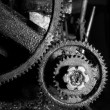 Dirty Gear in monotone color background — Stock Photo