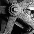 Stock Photo: Dirty Gear in monotone color background