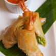 Fried spring roll — Stock Photo #16284211