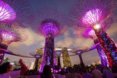 Night view of Supertree Grove at Gardens by the Bay — Stock Photo