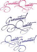 Original handwritten calligraphy for your logo — Stock Vector