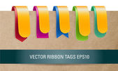 Colorful layered glossy vector ribbon tags collection — Stock Vector