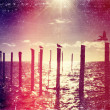 Vintage distressed photo: birds sitting on the posts in the river — Stock Photo