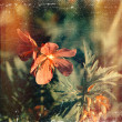 Distressed vintage grungy photo of small pink flowers — Stock Photo