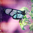 Distressed vintage grungy photo butterfly on flower — Stock Photo