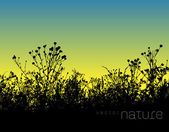 Vector nature background with lawn grass silhouette — Stockvector