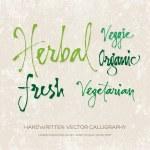 """Vector """"Organic"""" handwritten calligraphy set — Stock Vector #36627323"""