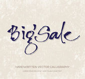 "Vector ""Big Sale"" handwritten calligraphy — Stock Vector"