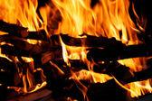 Closeup details of bonfire — Stock Photo