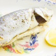 Sea bass baked — Stock Photo