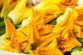Zucchini flowers — Stock Photo