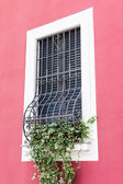 Windows with iron bars  — Stock Photo