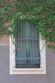 Windows with iron bars  — Stockfoto