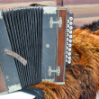 Old accordion — Stock Photo