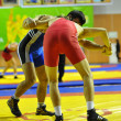 Competitions on Greco-Roman wrestling — Stockfoto