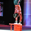 Artists of Chinese circus — Stock Photo #14136943