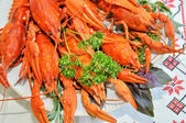 Boiled crayfish a good snack to beer — Stock Photo