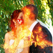 Kiss the bride and fiance — Stock Photo #14324813
