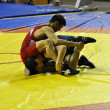Competitions on Greco-Roman wrestling — Stock Photo