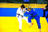 Judo competitions — Stock Photo