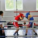 Women's boxing — Stock Photo #18080131