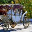 Wedding carriage — Stock Photo #18763077