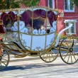 Wedding carriage — Stock Photo #18763079