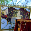Wedding carriage — Stock Photo #18763165