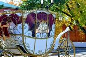 Wedding carriage — Stock Photo