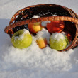 For the song Apples on the snow singer Michael Muromova — Stockfoto