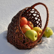 For the song Apples on the snow singer Michael Muromova — Stock Photo