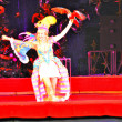 Stock Photo: Parrots in circus arena