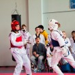 Taekwondo competition between girls — ストック写真