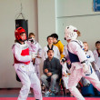 Taekwondo competition between girls — Stockfoto