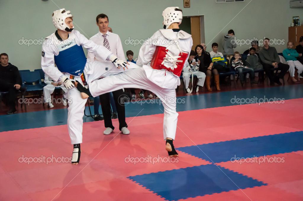 taekwondo korean martial arts