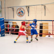 Boxing among adolescents — Foto Stock