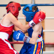 Competitions Boxing among Juniors — Stock Photo #33544817