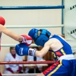 Competitions Boxing among Juniors — Stock Photo #33544821