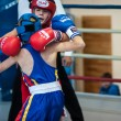 Competitions Boxing among Juniors — Stock Photo #33544933