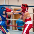 Competitions Boxing among Juniors — Stock Photo #33544943