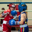 Competitions Boxing among Juniors — Stock Photo #33544979